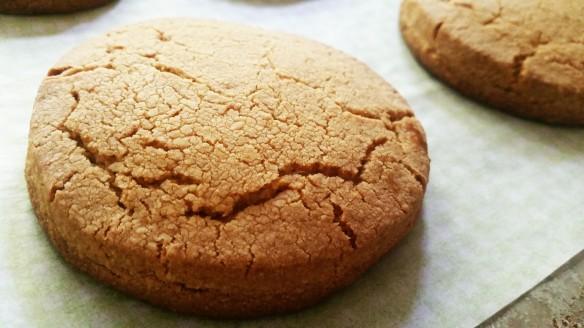 biscuit 1